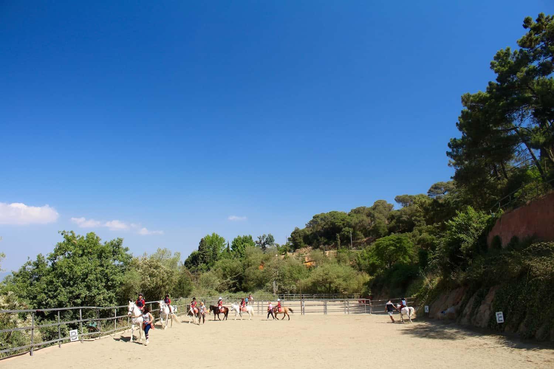 Dia A Cavall Entre Alella I Vallromanes