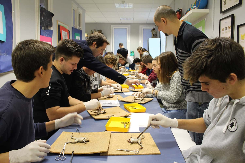Dia De Laboratoris, A L'escola Pérez Iborra