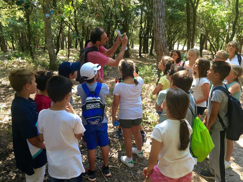Excursió De Primària Al Parc Natural Del Montengre
