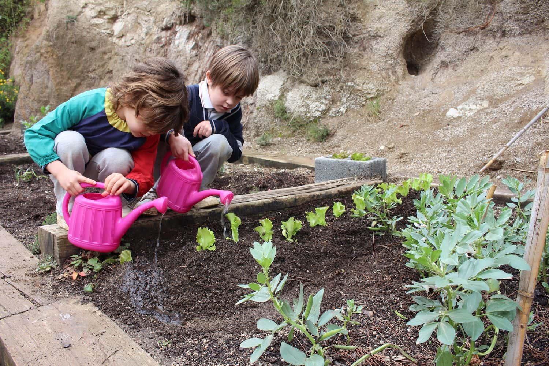 Inspira, El Programa Que Reforça El Nostre Ensenyament Humanista I En Contacte Amb La Natura